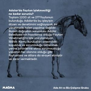 MagmaFayton4