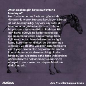 MagmaFayton9