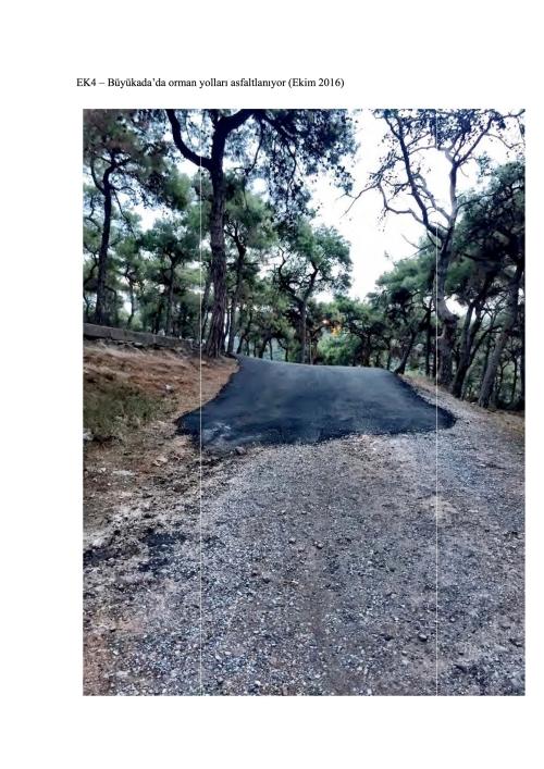 dernek-say-2016-51d-adalar-o-rman-isletme-sefligine-orman-yollarinin-asfaltlanmasiyla-ilgili-20161031-ekler